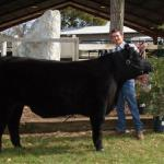 Colton Atkinson Champion Local Bred