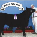 2013 Supreme Champion Steer